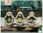 Три мартышки