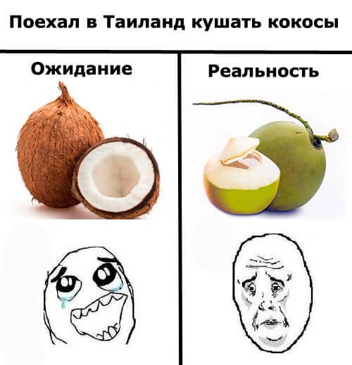 Тайские кокосы мем Ожидание и реальность Фрукты в Таиланде Фрукты и овощи Таиланда.
