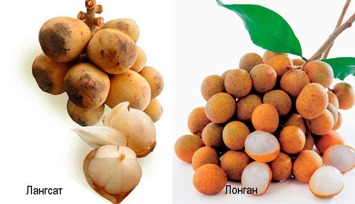 Фрукты в Таиланде экзотические фрукты Фрукты и овощи Таиланда.
