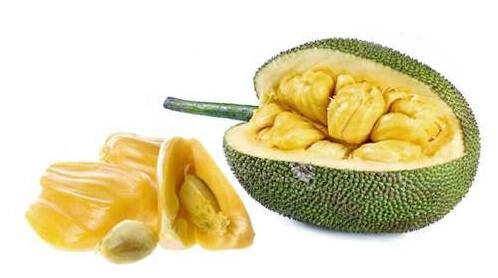 джекфрут leto.today Фрукты в Таиланде Фрукты и овощи Таиланда.
