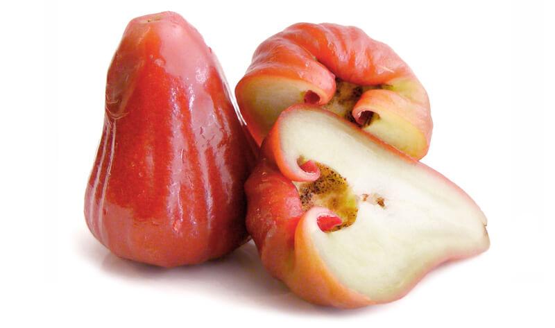 розовое яблоко leto.today Фрукты в Таиланде Фрукты и овощи Таиланда.
