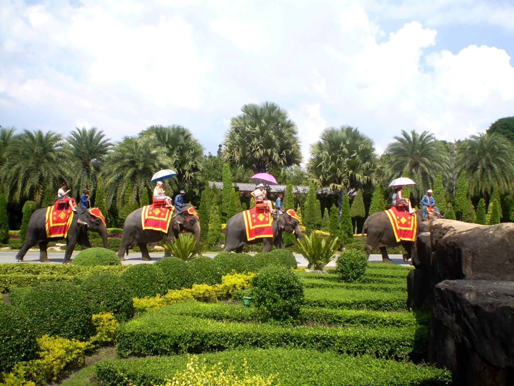 сколько денег взять в таиланд - катание на слонах